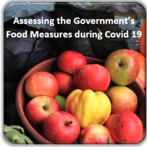Assessing the Government's Food Measures During COVID-19