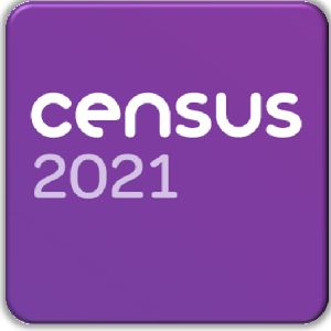 FI Census 2021 for GM Poverty Action